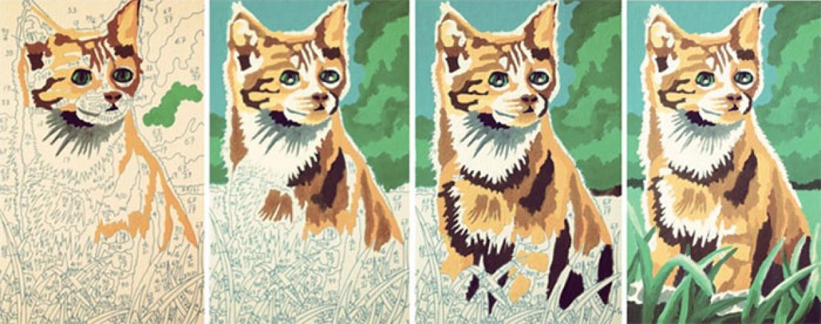 Раскраска по номерам фото до и после