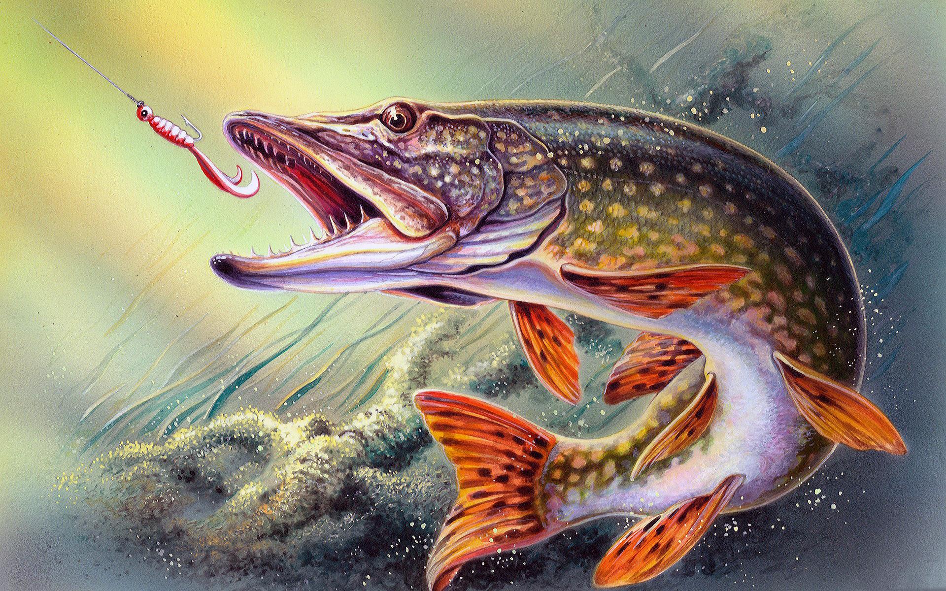 сожалению, рыболов в картинках такие перемены