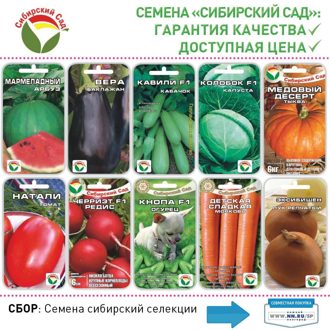 Агрофирма Сад И Огород Интернет Магазин