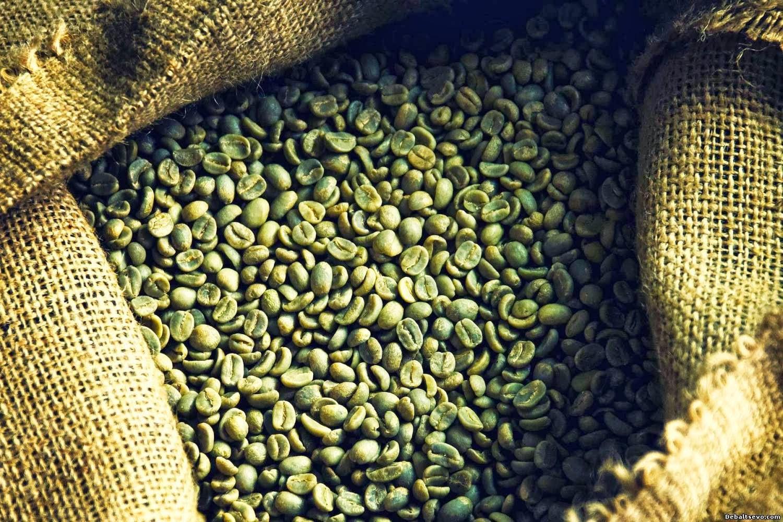 Кто Не Похудел От Зеленого Кофе. Вся правда о кофе: как кофе мешает вам похудеть, и как заставить его сжигать жир?