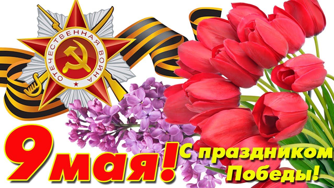 Открытки с 9 мая праздником победы, любимый