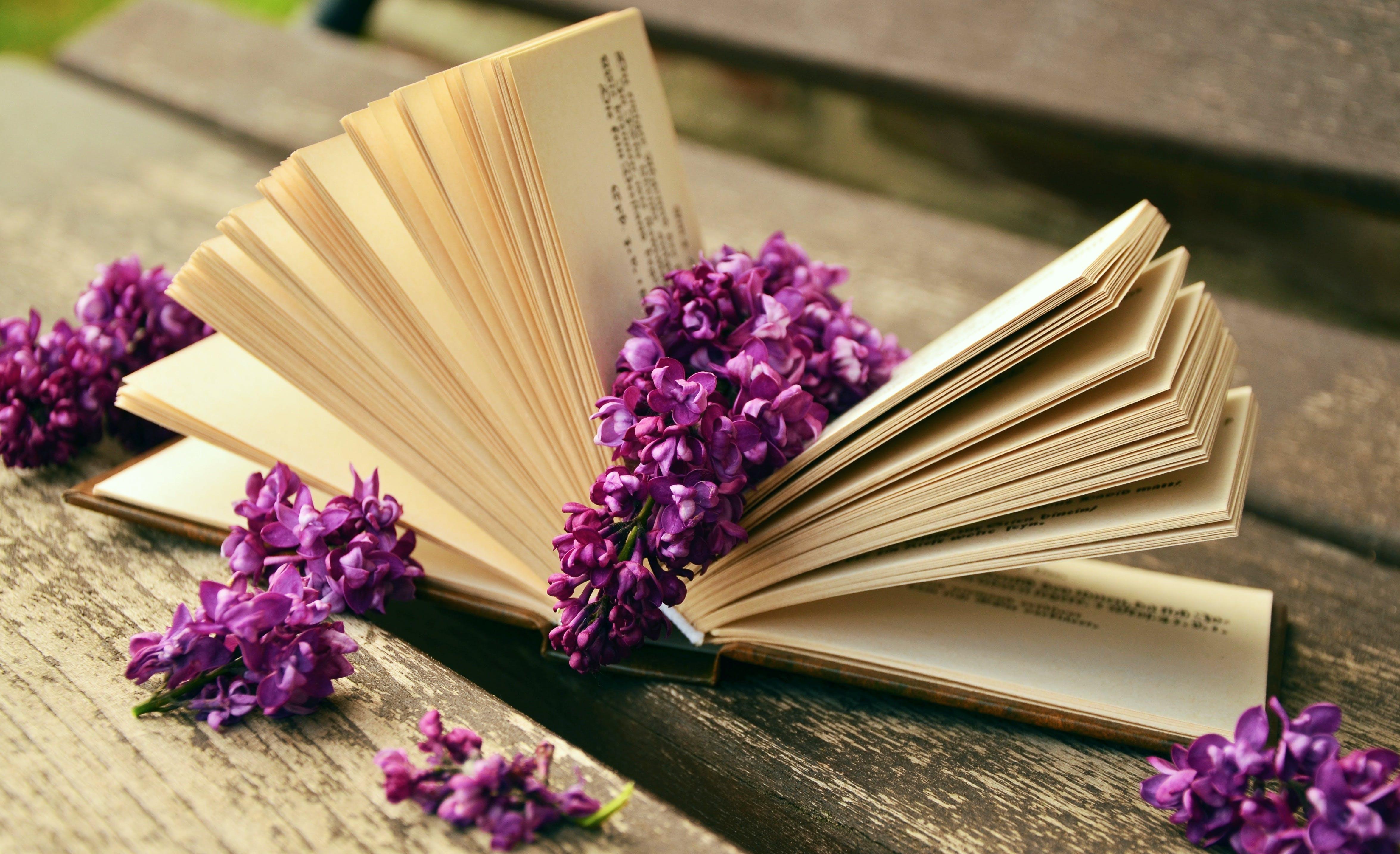 интересные картинки для гостевых книг заветная