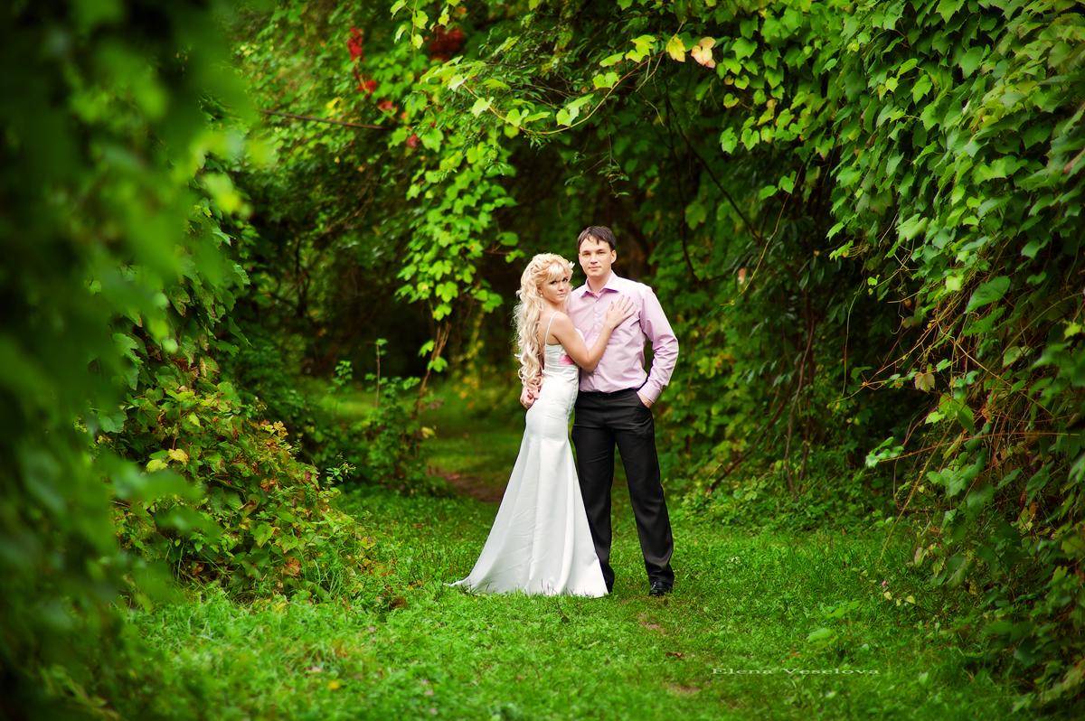 посоветуйте фотографа на свадьбу омск жители увидели, что