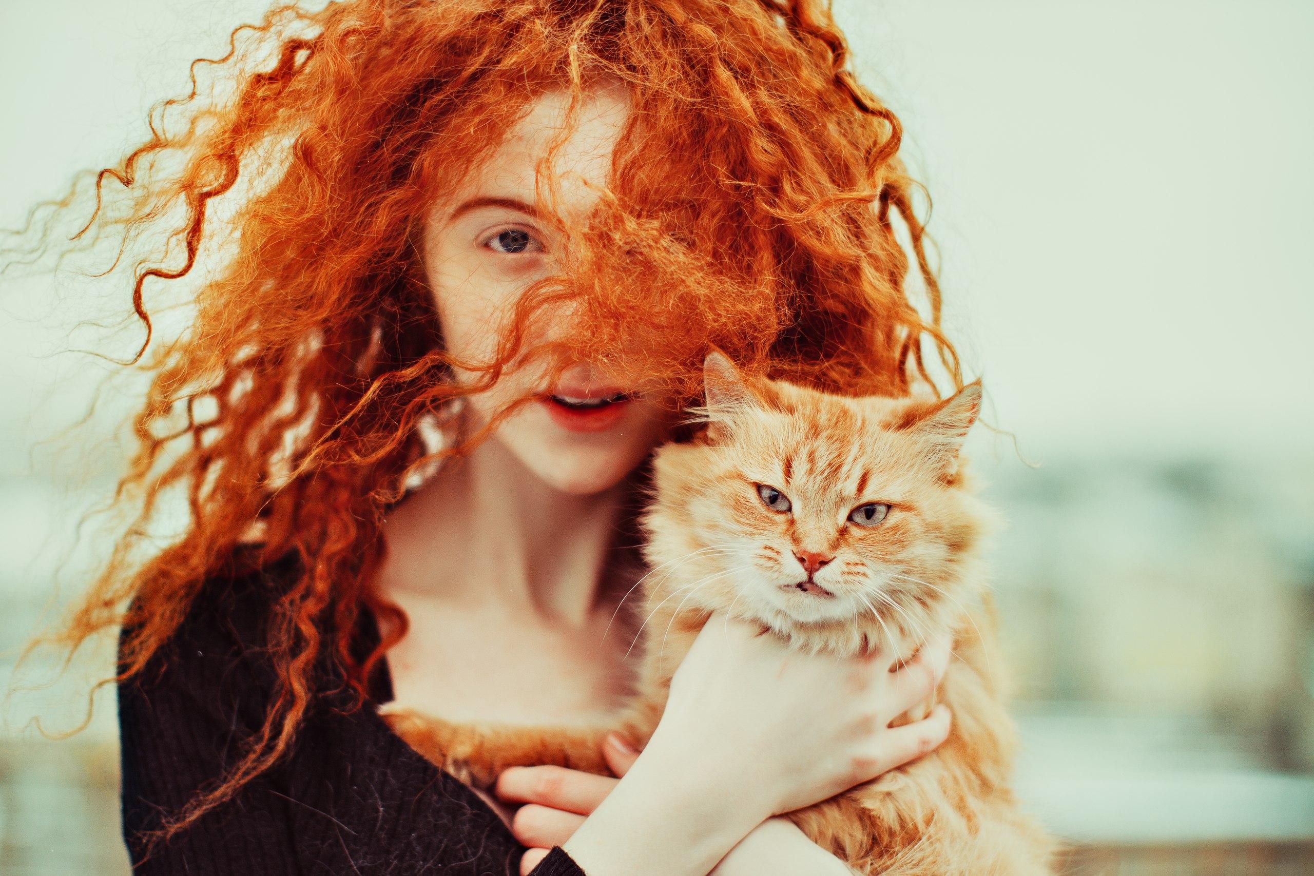 Волосы картинки с котенком