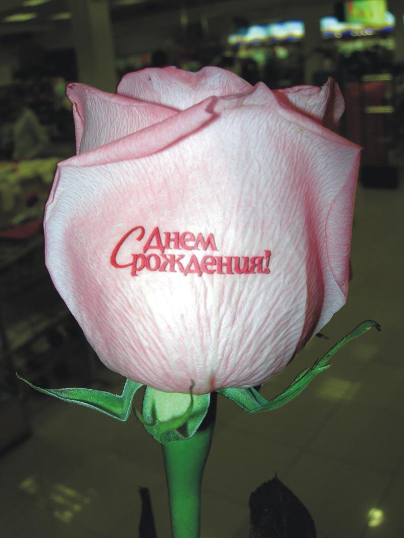 Хороших выходных, картинки цветочки с надписями