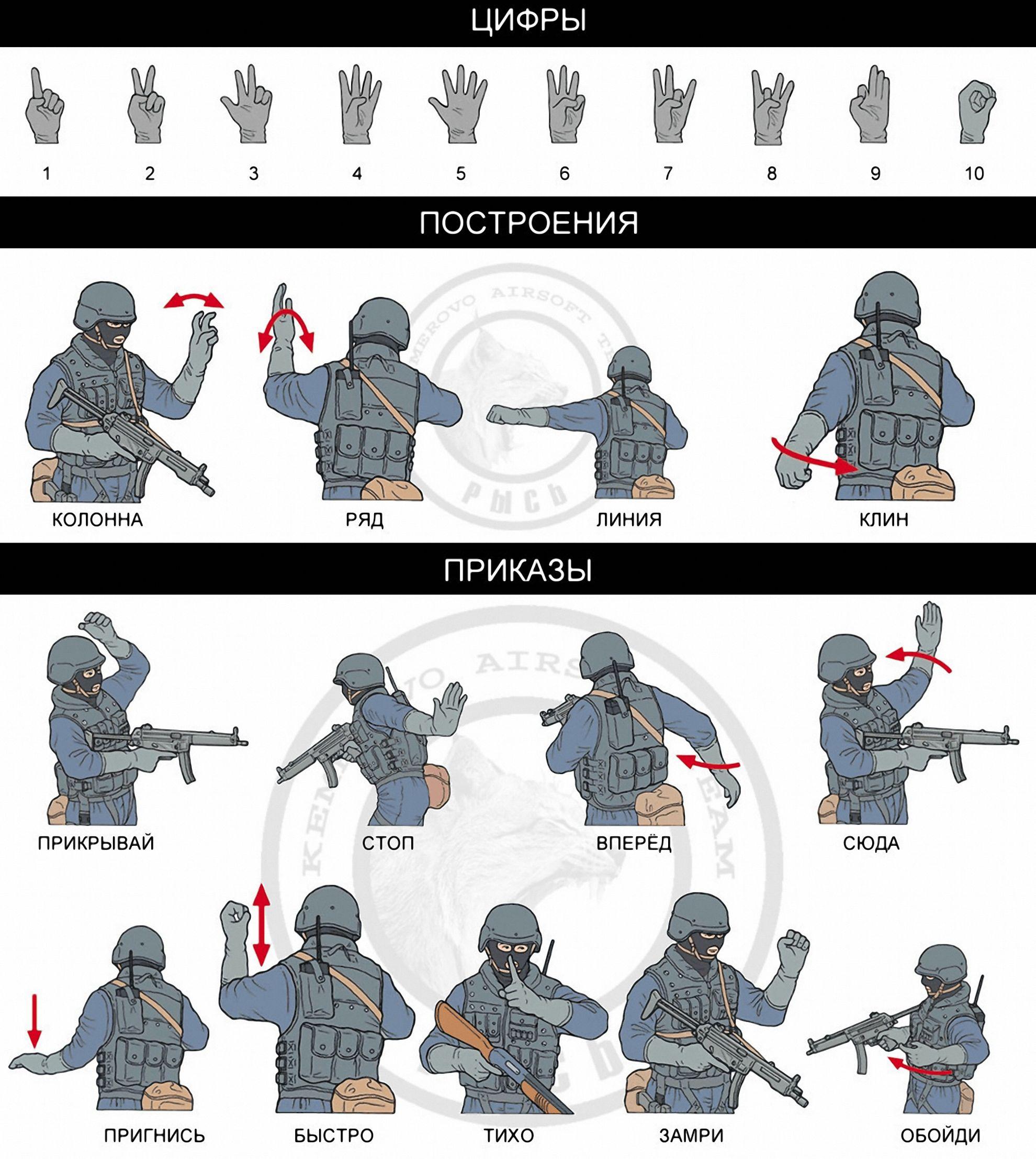 ессентуках жесты спецназа и их значение картинки спондилоэпифизарная