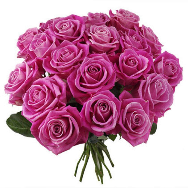 анимация розы букеты роз частью мероприятий является