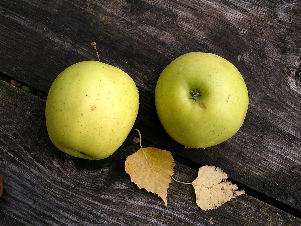 картинка спасибо с яблоками приветик виде