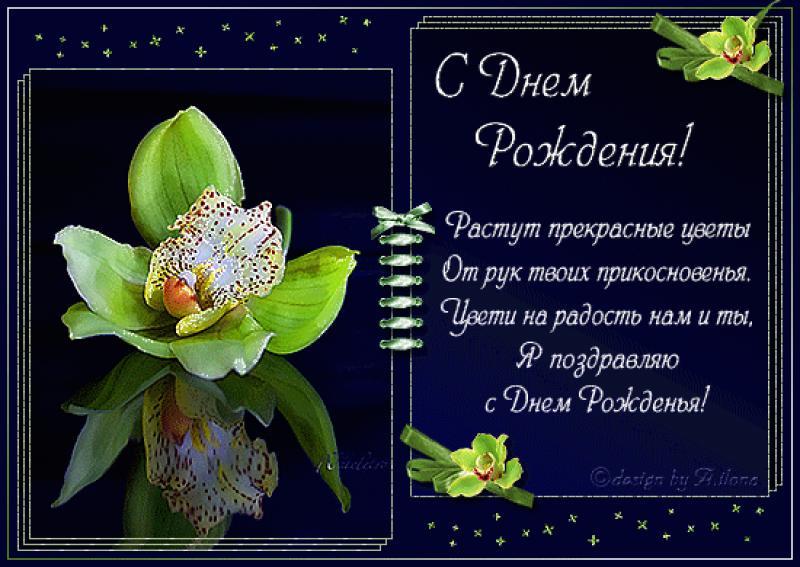 Поздравление с днем рождения цветы орхидеи праздником
