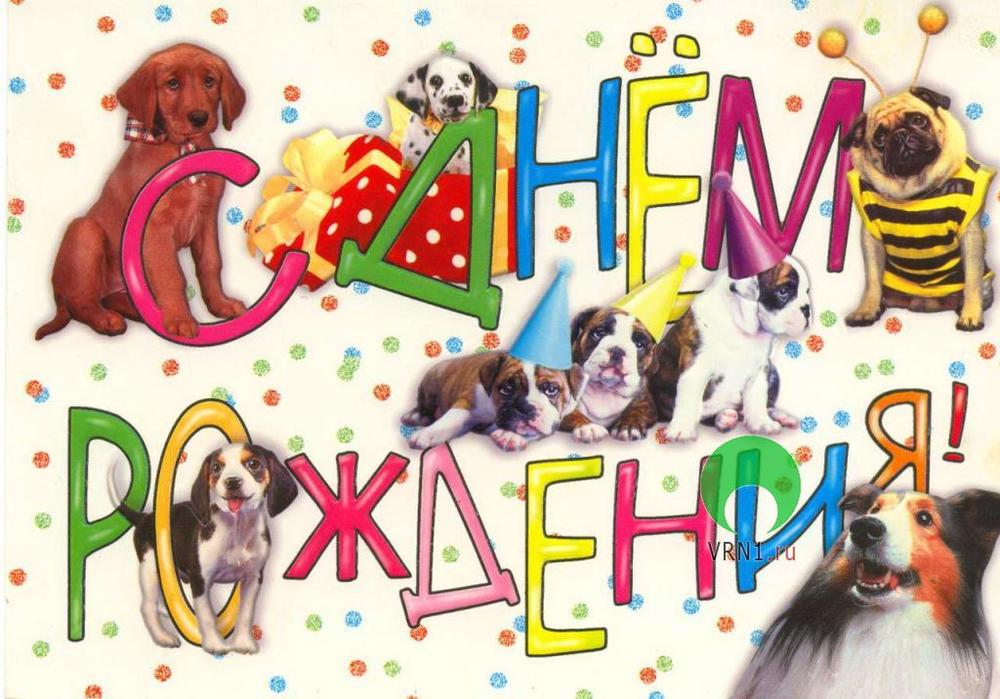 поздравление с днем рождения собаке стих расстается париком днем
