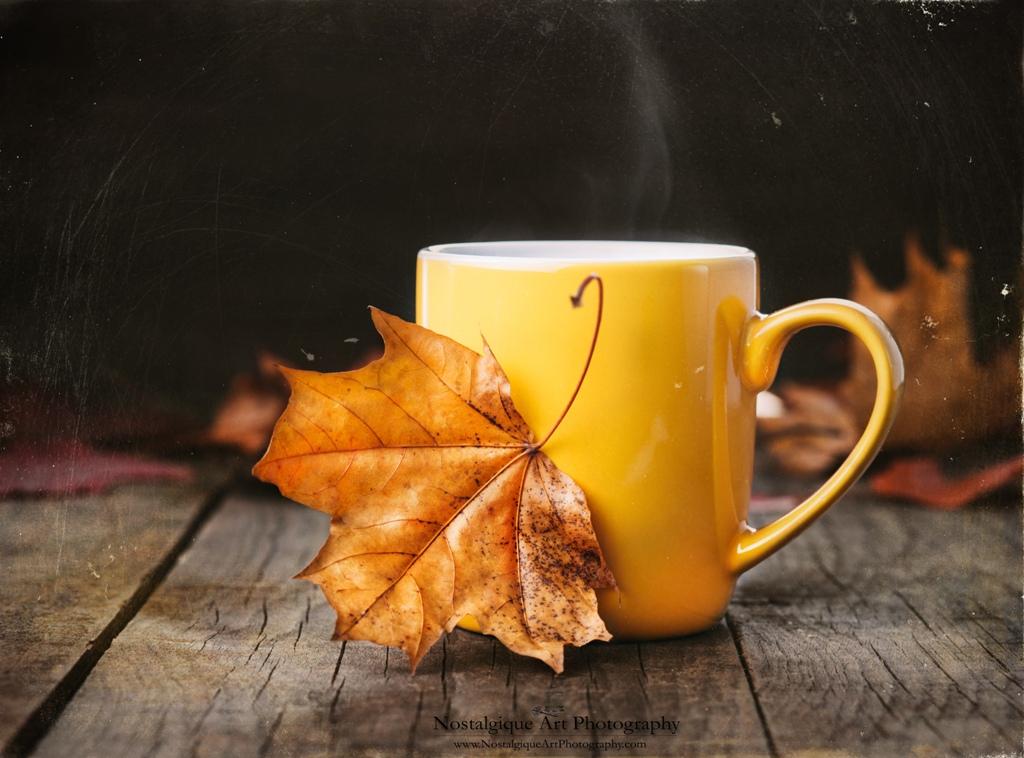 картинки осень кофе листья гуся
