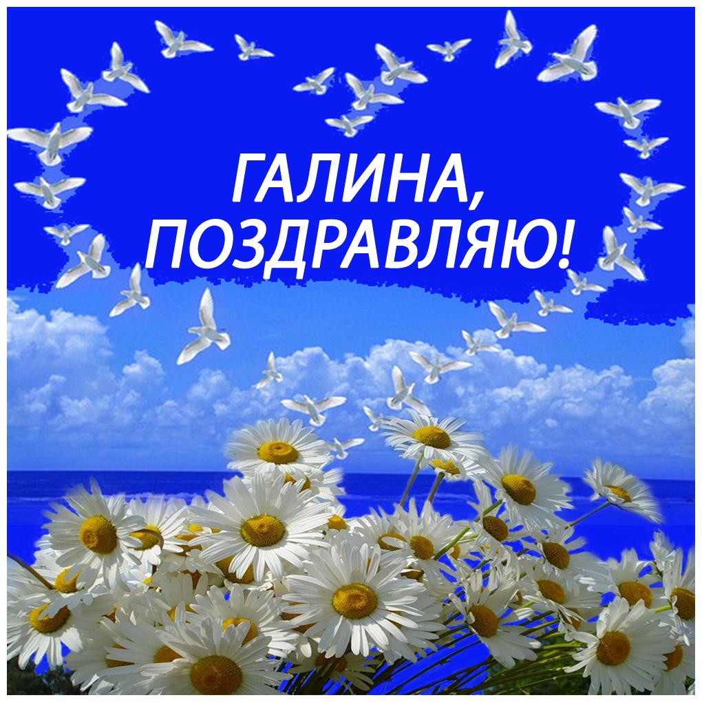 Поздравления с днем рождения чистого неба