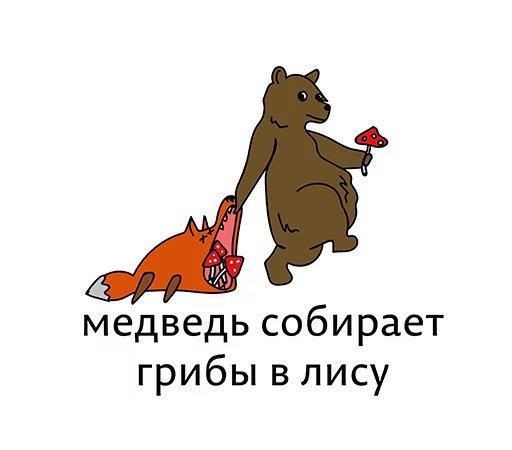 Шпиц фото мишка и лисичка играют миниатюрным