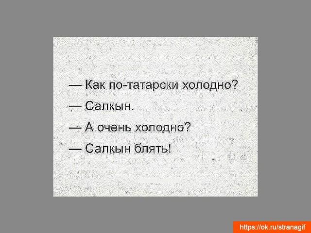 Прикол по татарски картинки