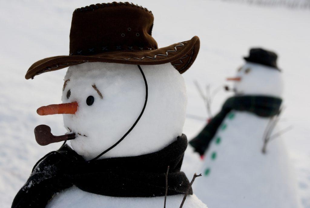 говорим снеговик смешные фото сумки