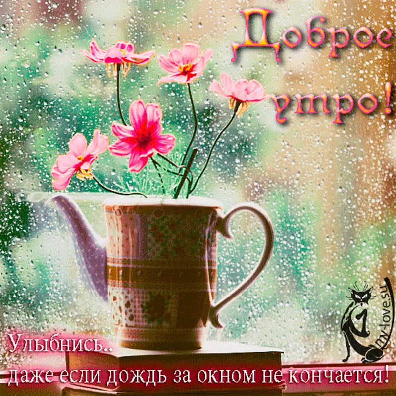 Открытки дню, открытка дождливое доброе утро