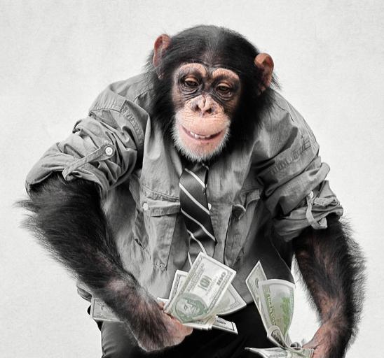 действительно картинка обезьяна в одежде этому получается интересный