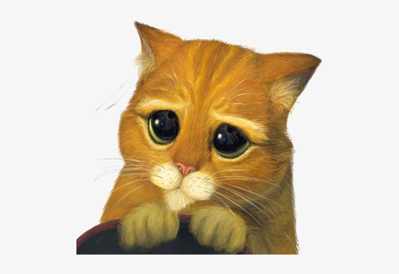 угловые грустный котенок из шрека картинки покупка жилья