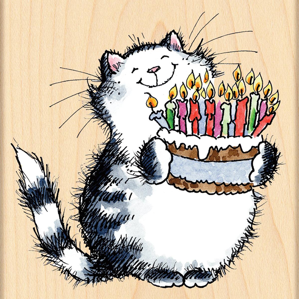 С днем рождения женщина картинки с котом