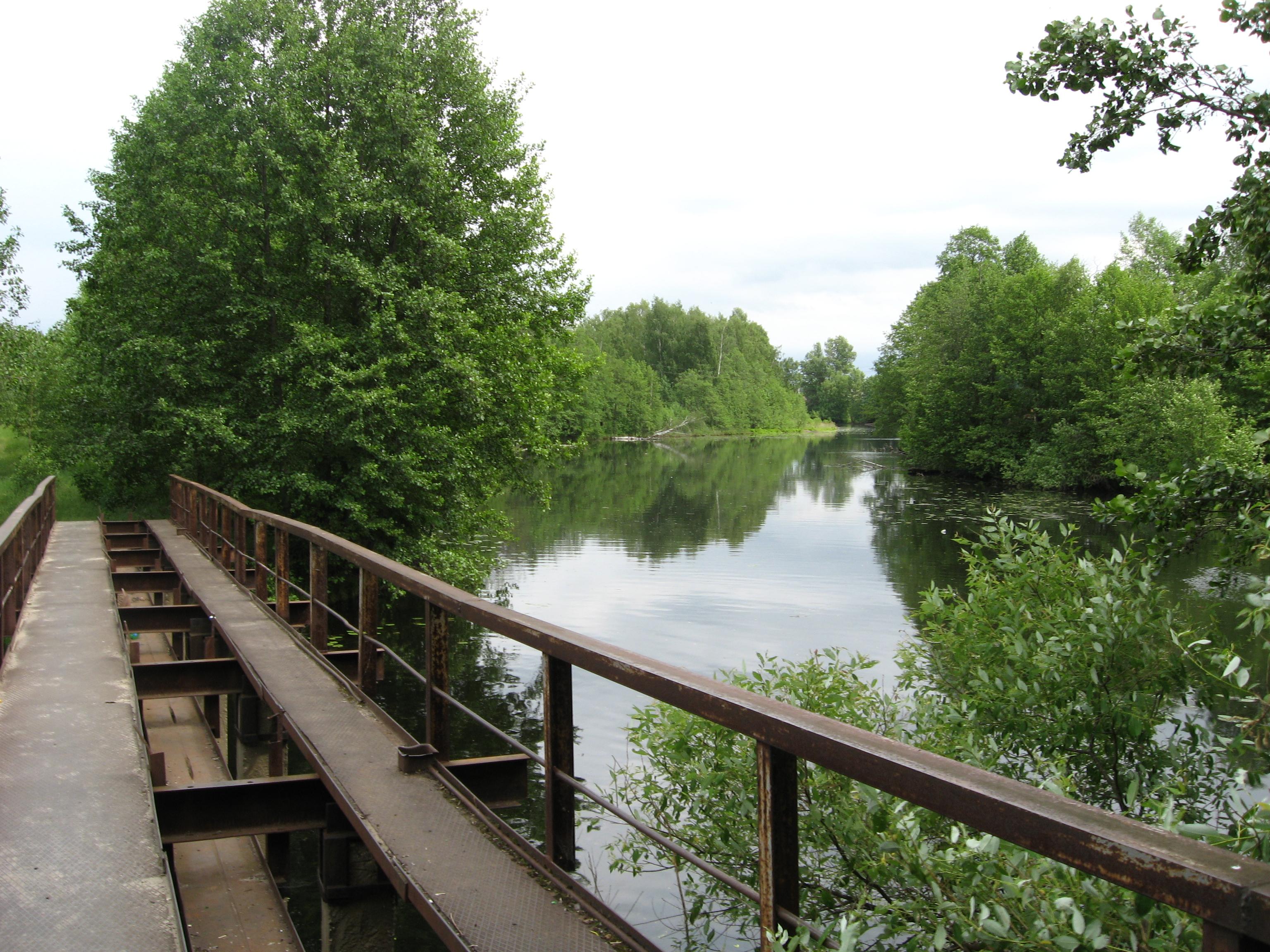 вас желаю, фото моста в лухе городецкий или лыковский это символ