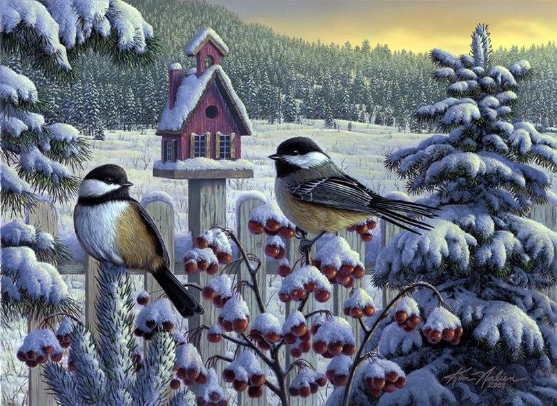 Открыток для, открытка на зимнюю