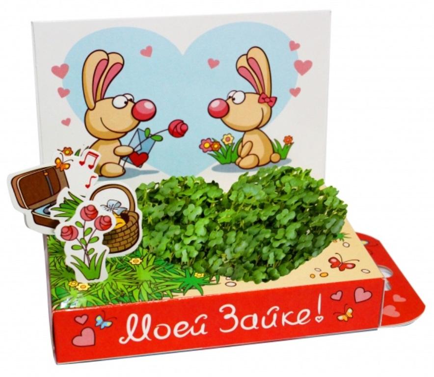 Живая открытка моей зайке бумбарам, днем рождения машей