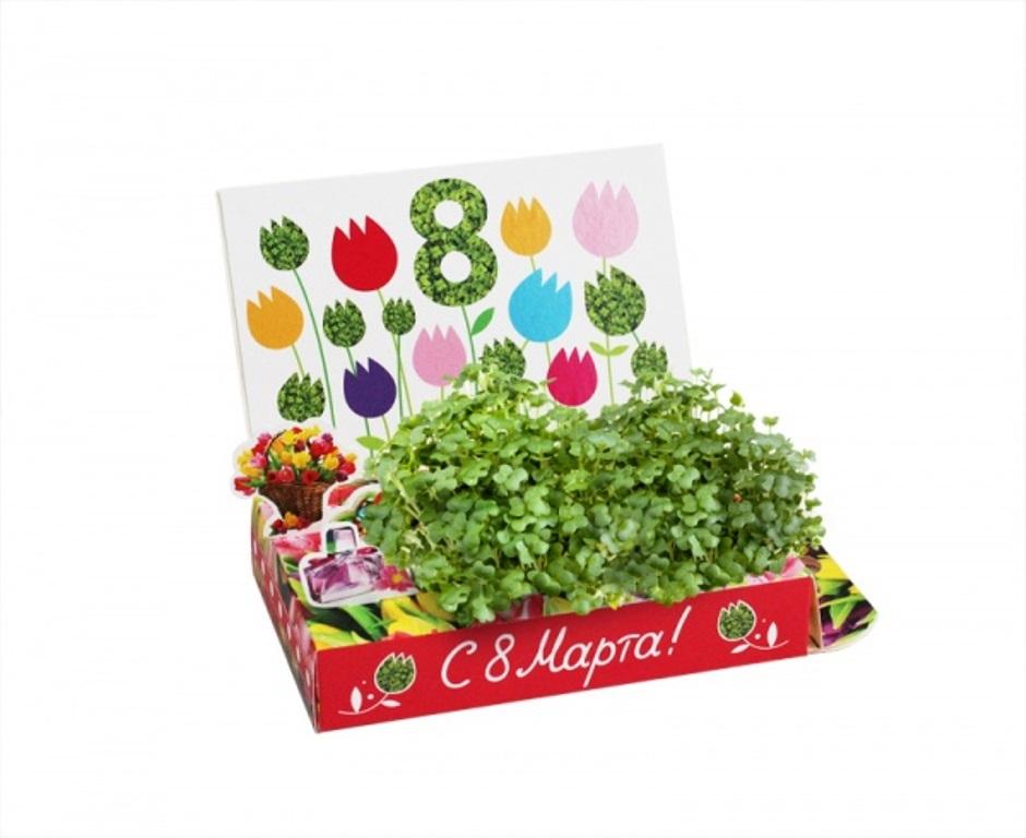 Днем, открытки с выращиванием растений