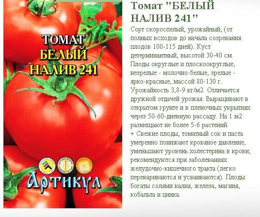 котёнка томаты белый налив характеристика фото отзывы день
