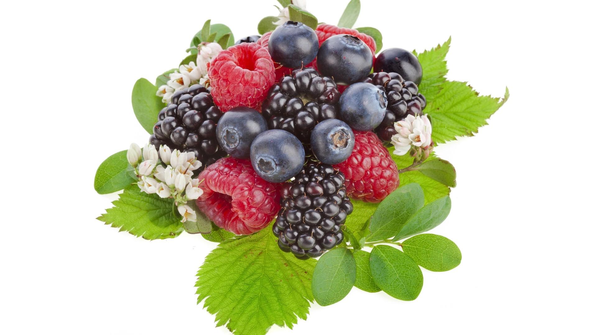Лесные ягоды на одной картинке