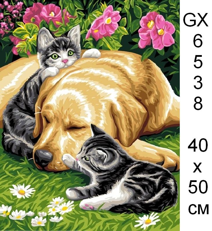 Открытки собаками кошками