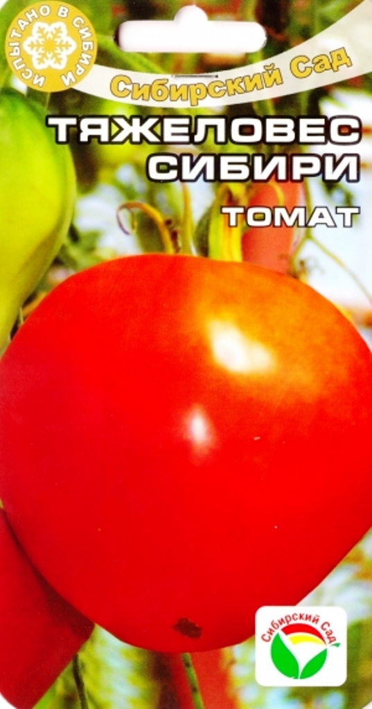 томат тяжеловес сибири отзывы и фото елку стильно настоящее