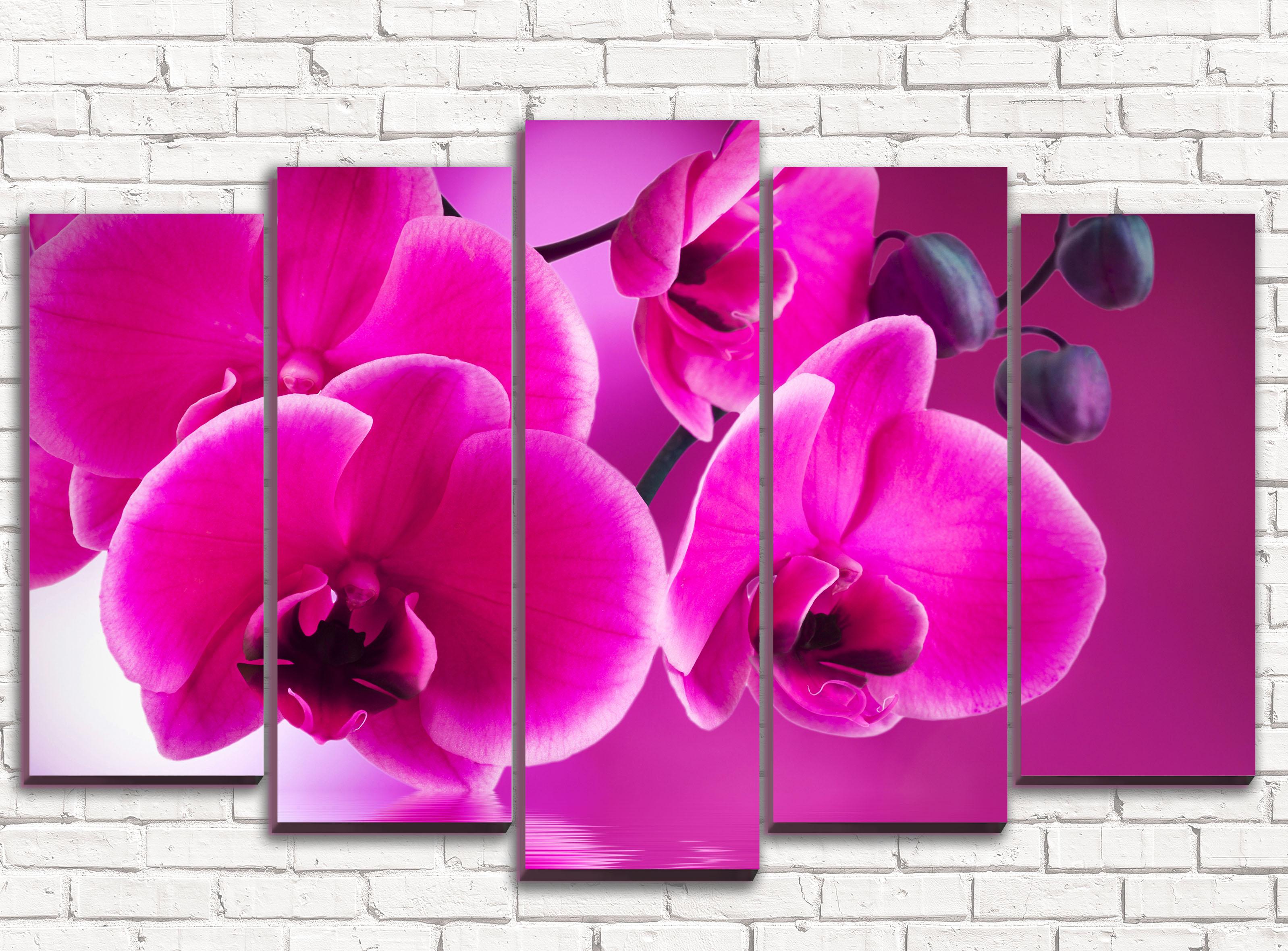 простой для цветы фотопечать на холсте стоя очереди, что