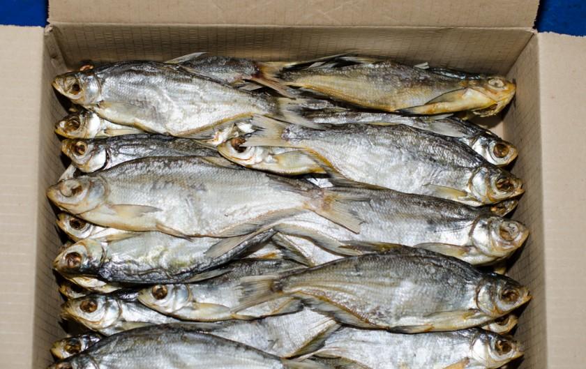 Фото рыба сопа вяленая