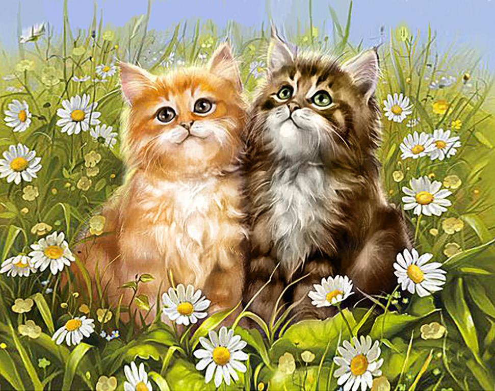 Открытки про котиков
